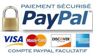 module-de-paiement-pour-e-commerce-1405320798